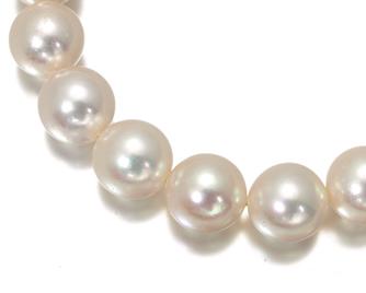 TASAKI タサキ真珠 ネックレス アコヤ真珠 パール 8.5-9.0mm珠 シルバー