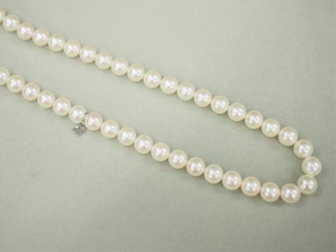 ミキモト ネックレス シルバー 40.5g アコヤ真珠